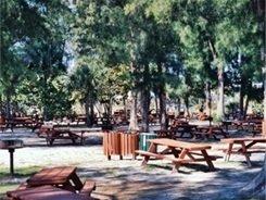 Picnicking at Siesta Beach Sarasota Florida