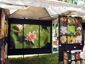 Art on display at the St Armands Art festival