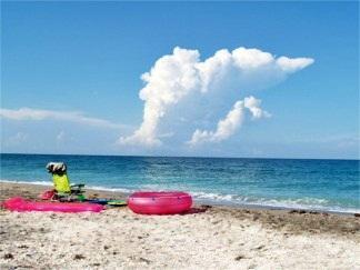 Turtle Beach Siesta Key Florida