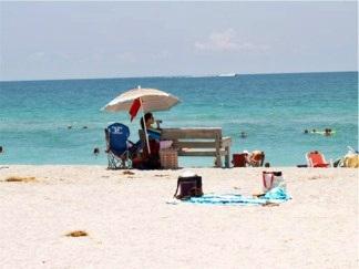 Park Bench at Venice Beach Florida